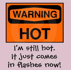 herbs for hot flashes and menopause