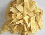 Chinese herb astragalus boosts your immune system