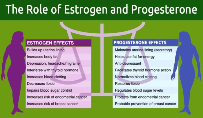 Progesterone supplements
