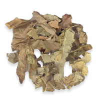 Pacific Herbs Ingredient Epimedium Yin Yang Huo