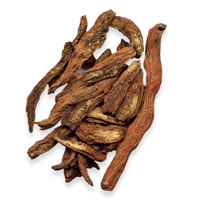 Ingredient Salvia Root Dan Shen