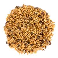 Pacific Herbs Ingredient Biota seed bai zi ren